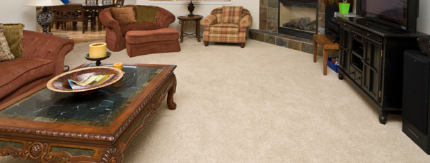 Carpet and Fabric Cleaning, Fairburn, GA